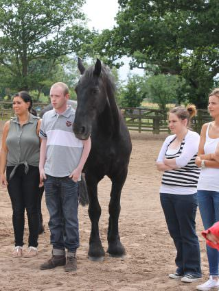 Young people working with horses