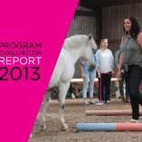 Transitions Program Evaluation Report 2013 cover